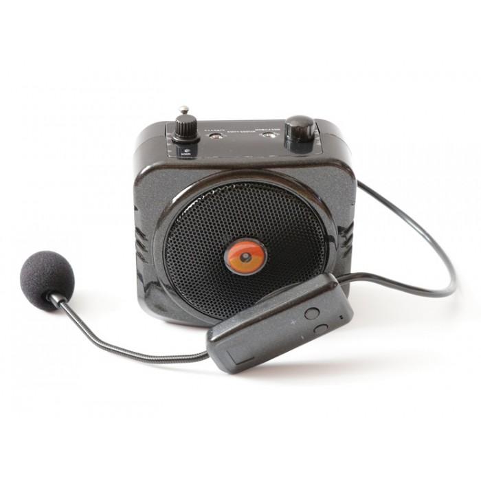 Громкоговоритель РМ-87 с беспроводным микрофоном