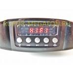 Усилитель голоса для промоутера PM-53 с аккумулятором, записью, МП3 плеером
